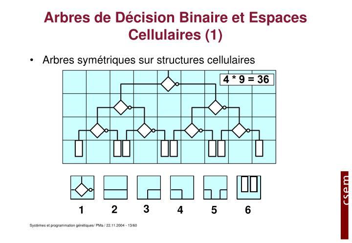 Arbres de Décision Binaire et Espaces Cellulaires (1)