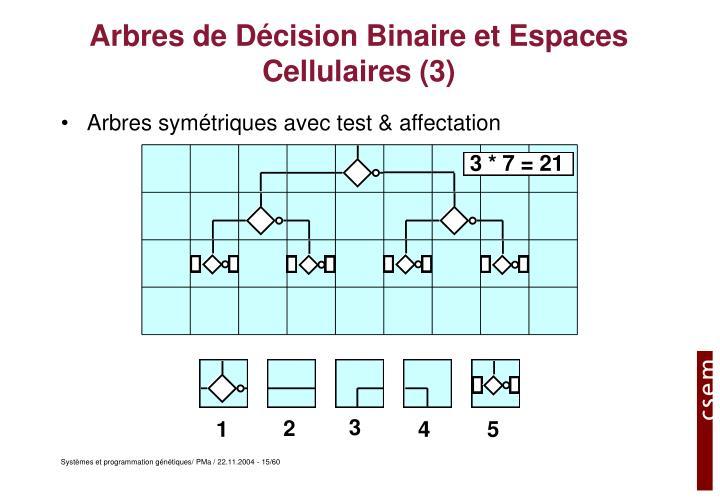 Arbres de Décision Binaire et Espaces Cellulaires (