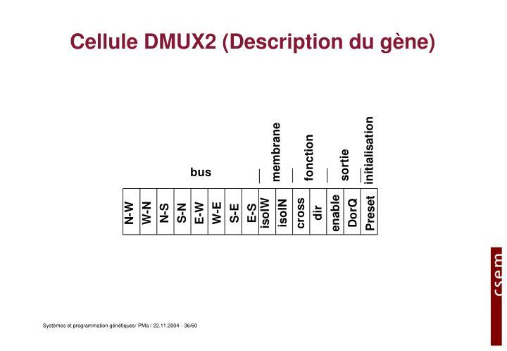 Cellule DMUX2 (Description du gène)