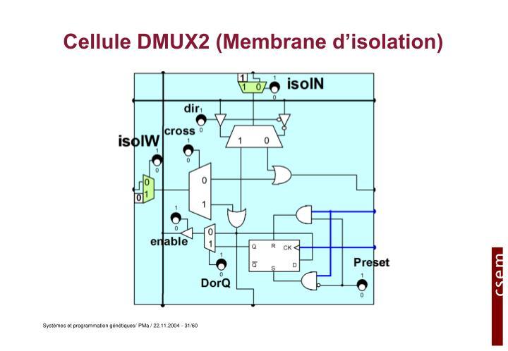 Cellule DMUX2 (Membrane d'isolation)