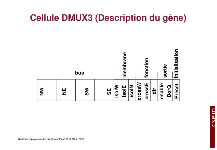 Cellule DMUX3 (Description du gène)
