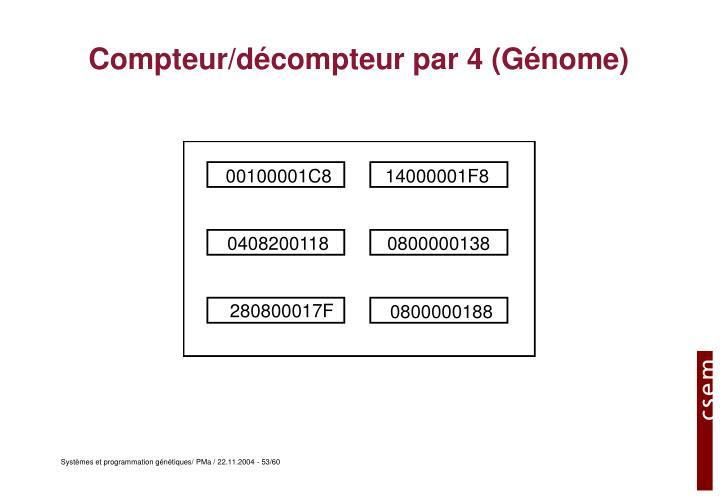 Compteur/décompteur par 4 (Génome)