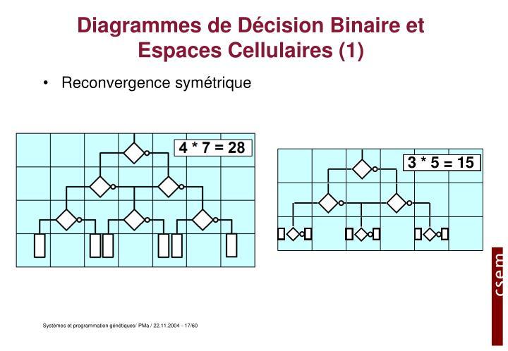 Diagrammes de Décision Binaire et Espaces Cellulaires (1)