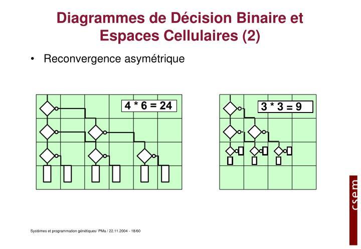 Diagrammes de Décision Binaire et Espaces Cellulaires (