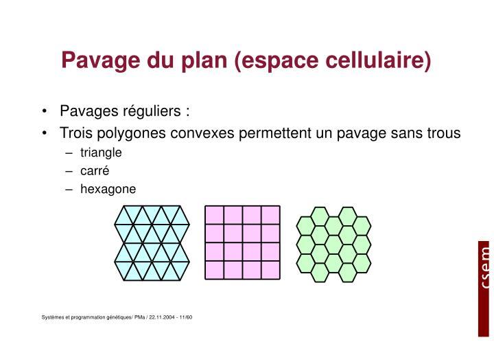Pavage du plan (espace cellulaire)