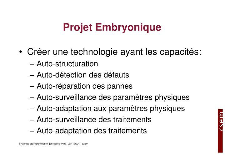 Projet Embryonique