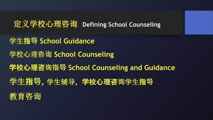 定义学校心理咨询