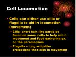 cell locomotion