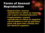 forms of asexual reproduction1