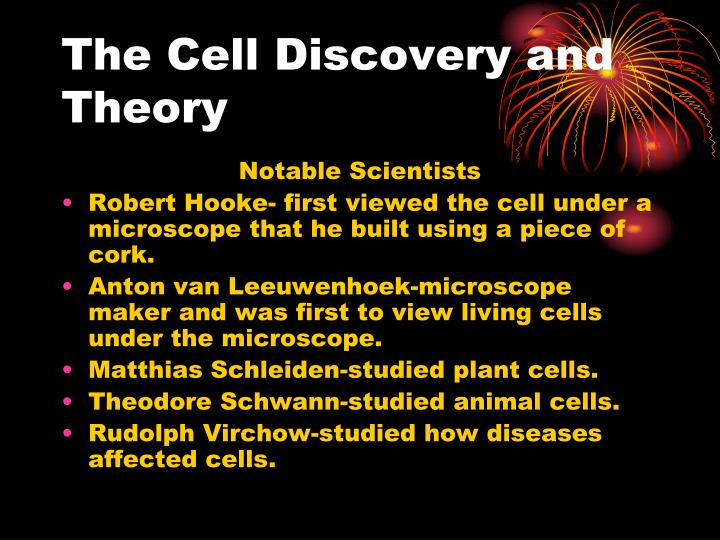 The Cell Discovery and Theory