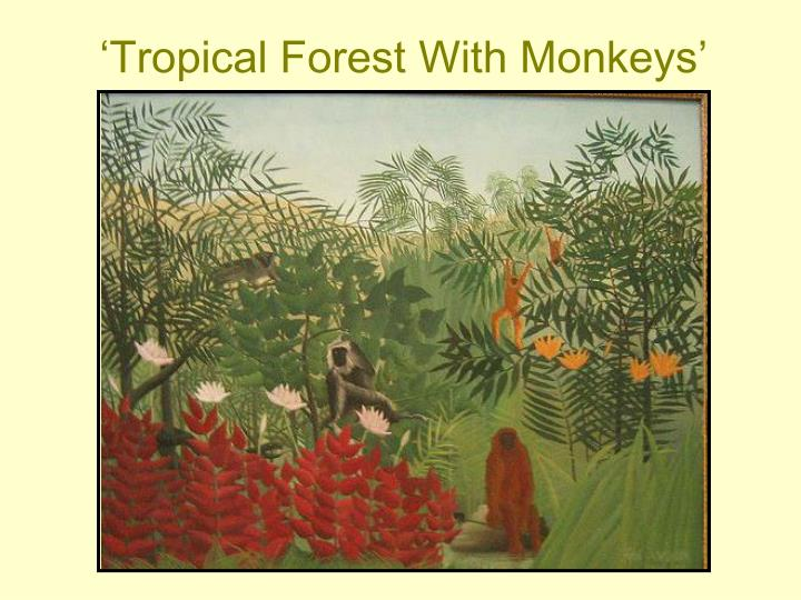 'Tropical Forest With Monkeys'