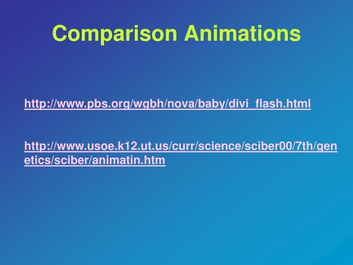 Comparison Animations