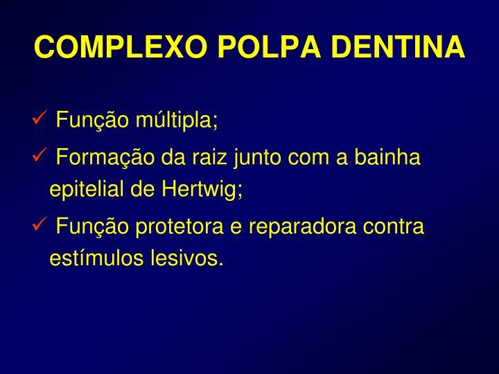 COMPLEXO POLPA DENTINA