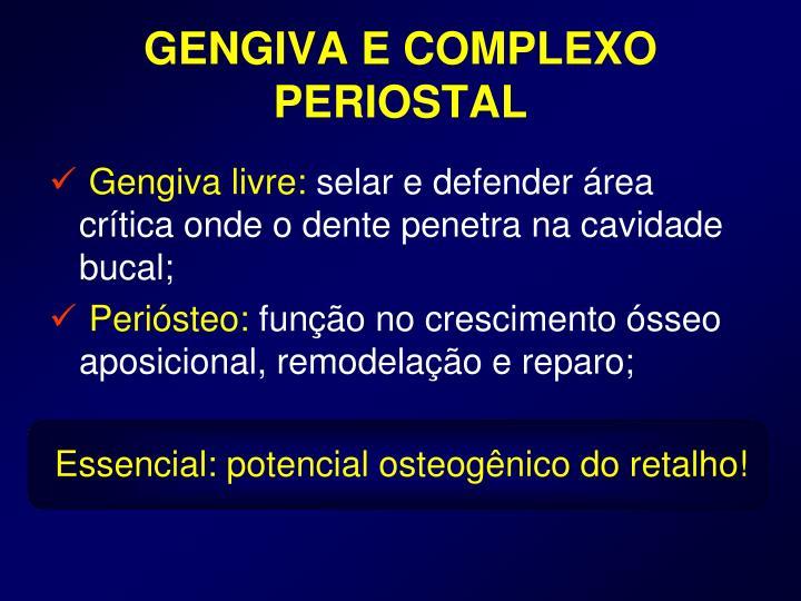 GENGIVA E COMPLEXO PERIOSTAL