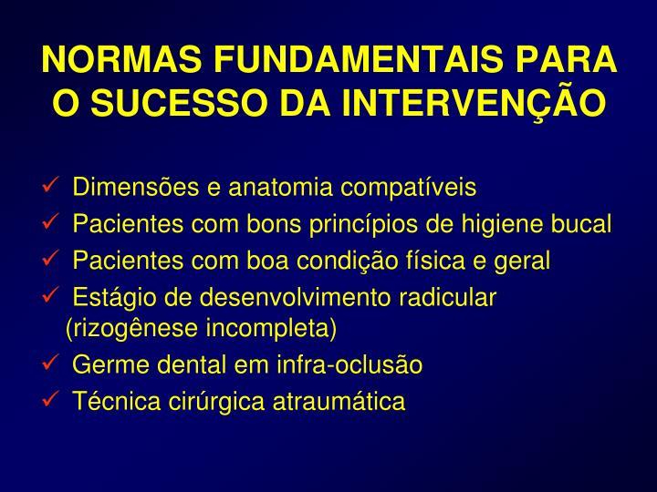 NORMAS FUNDAMENTAIS PARA O SUCESSO DA INTERVENÇÃO