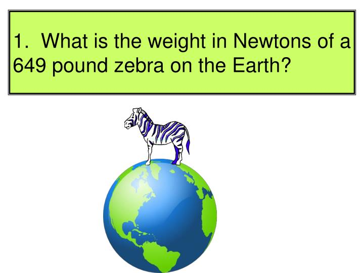 1.  What is the weight in Newtons of a 649 pound zebra on the Earth?