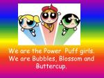we are the power puff girls we are bubbles blossom and buttercup