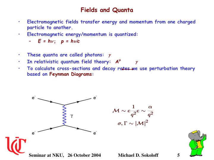 Fields and Quanta