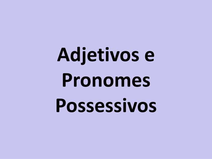 Adjetivos e Pronomes Possessivos