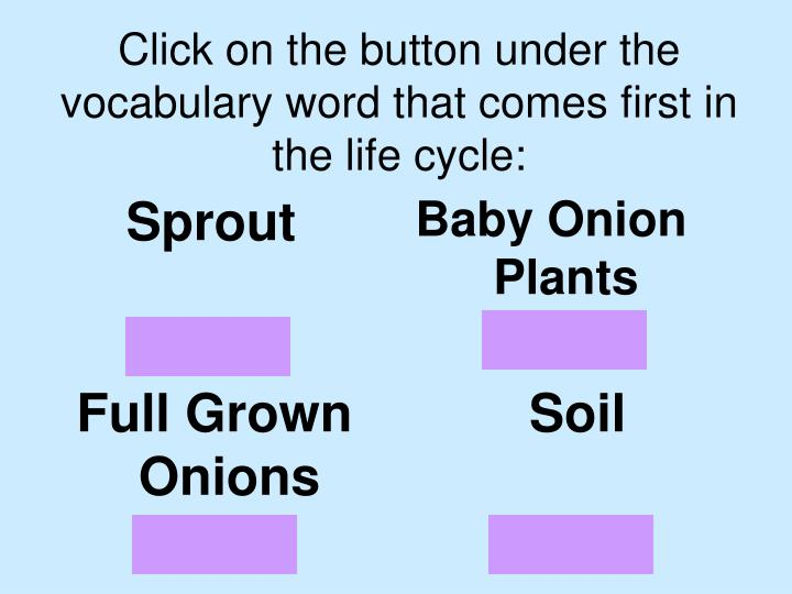 Click on the button under the vocabulary word that comes first in the life cycle: