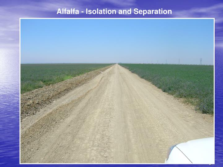 Alfalfa - Isolation and Separation
