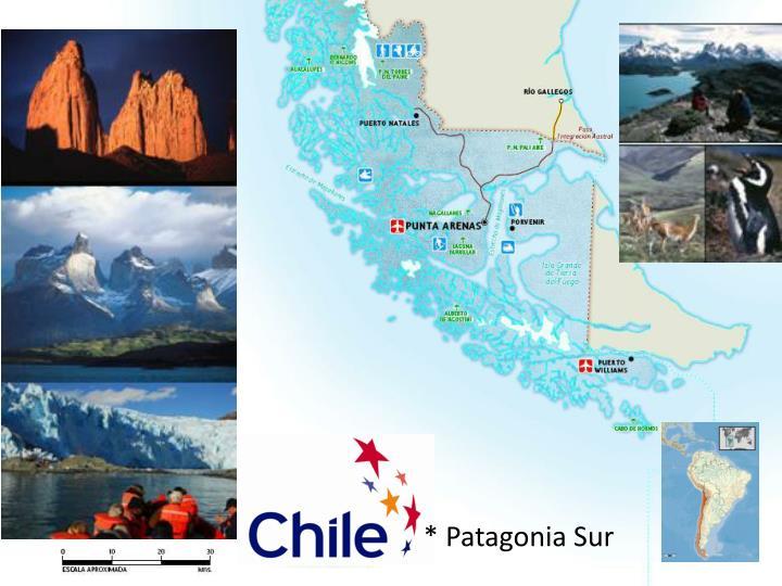 * Patagonia Sur