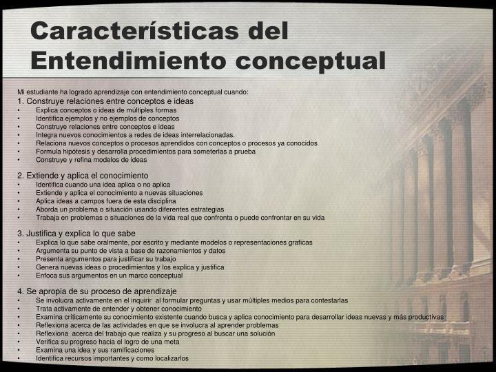 Características del Entendimiento conceptual