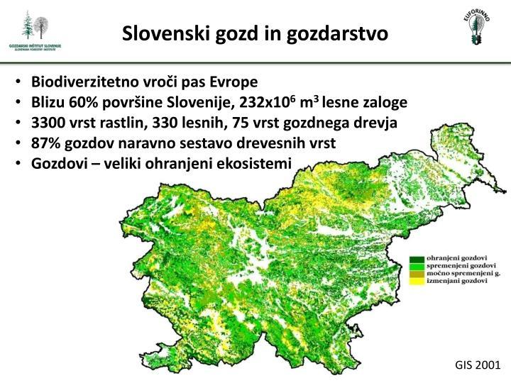 Slovenski gozd in gozdarstvo