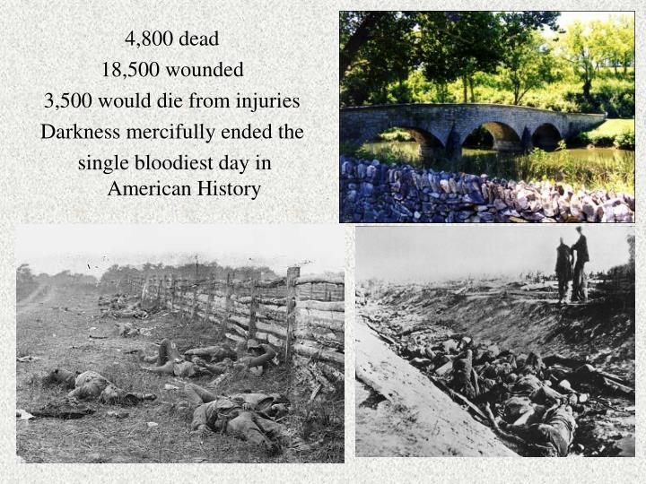 4,800 dead