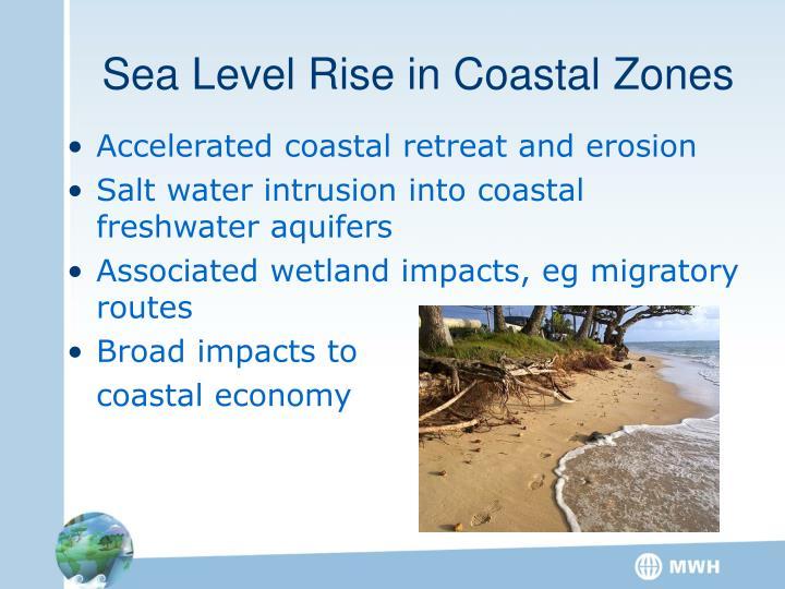 Sea Level Rise in Coastal Zones