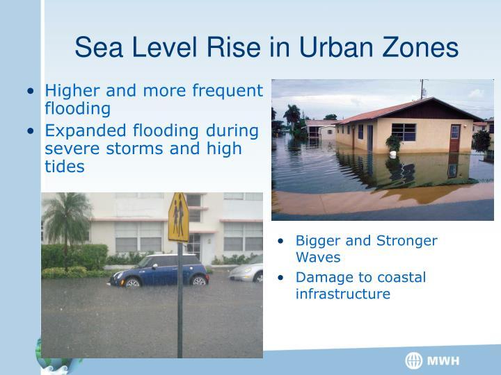 Sea Level Rise in Urban Zones