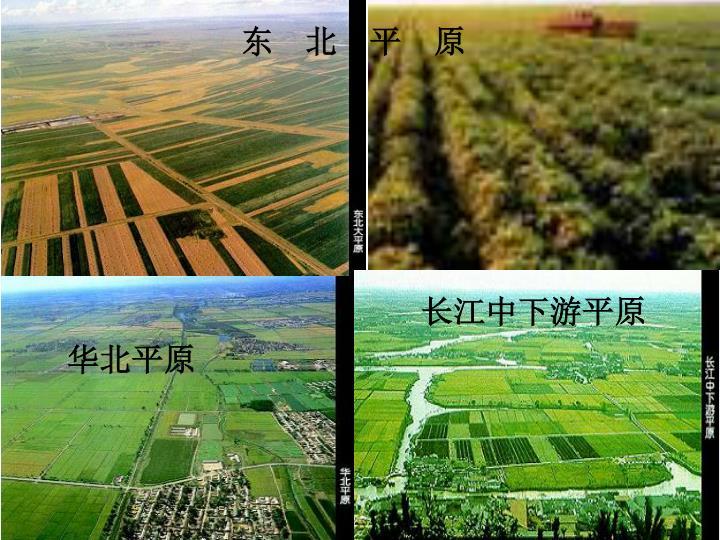 东    北    平    原