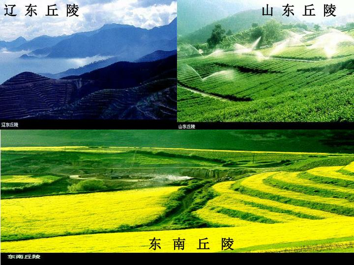 辽  东  丘  陵