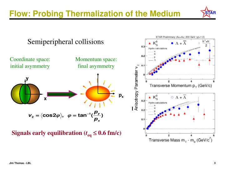 Flow probing thermalization of the medium