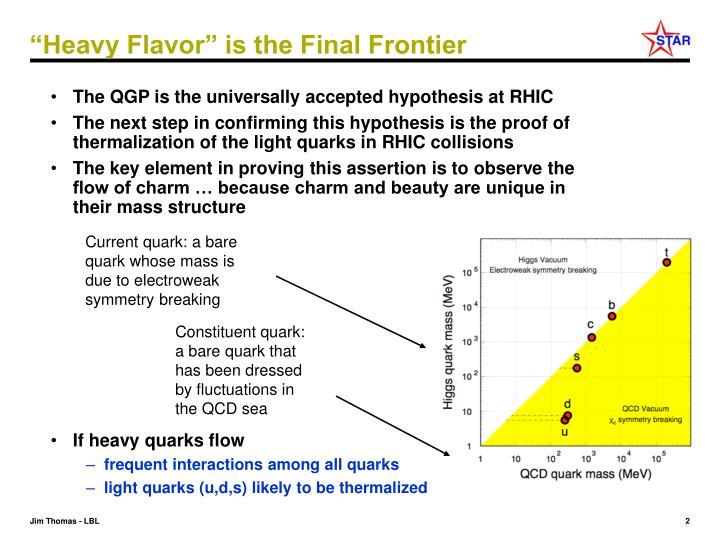 """""""Heavy Flavor"""" is the Final Frontier"""