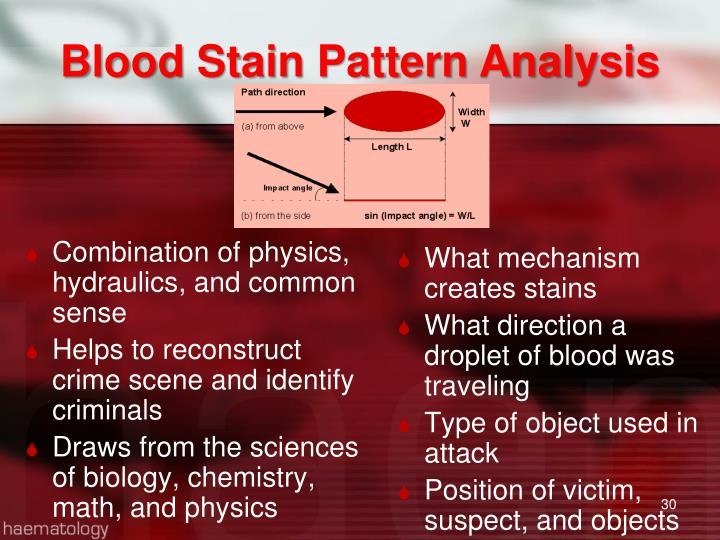 Blood Stain Pattern Analysis
