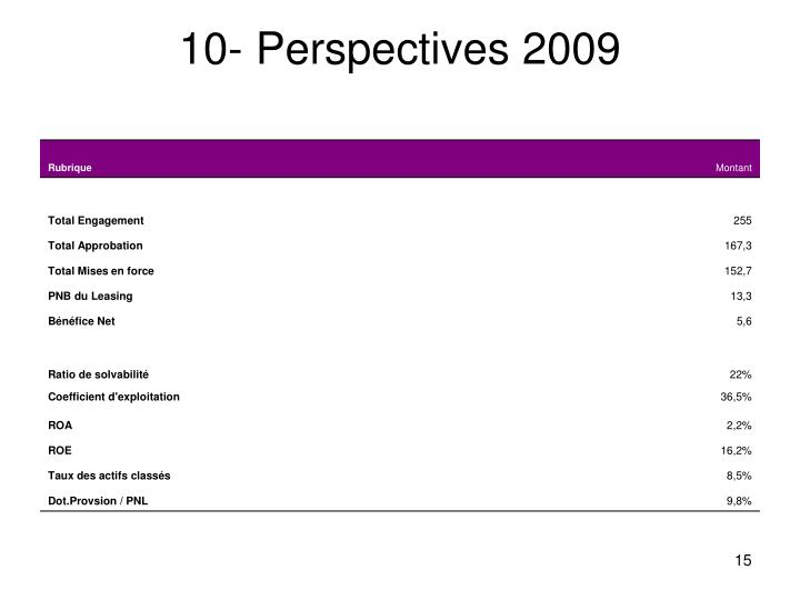 10- Perspectives 2009