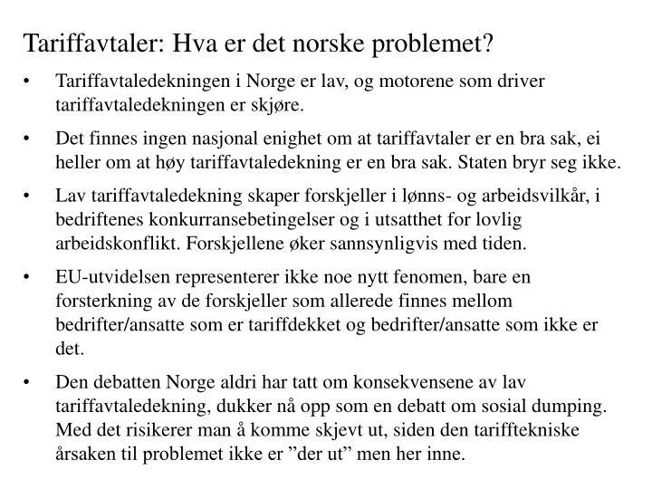 Tariffavtaler: Hva er det norske problemet?
