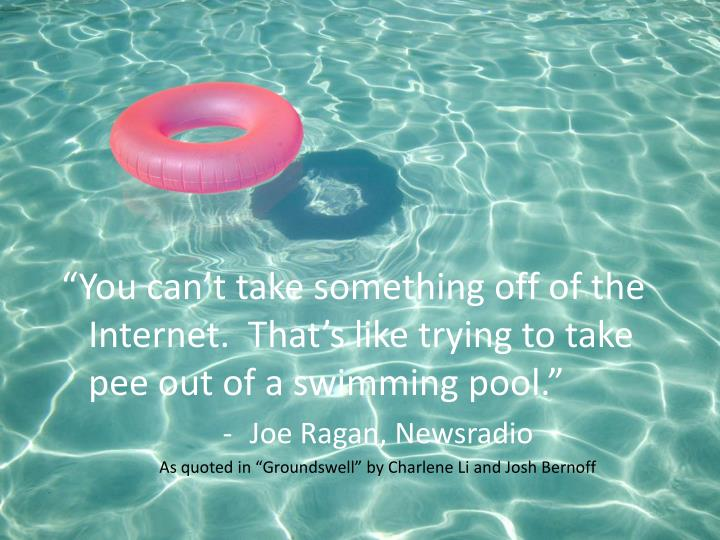 """You can't take something off of the Internet.  That's like trying to take pee out of a swimming pool."""