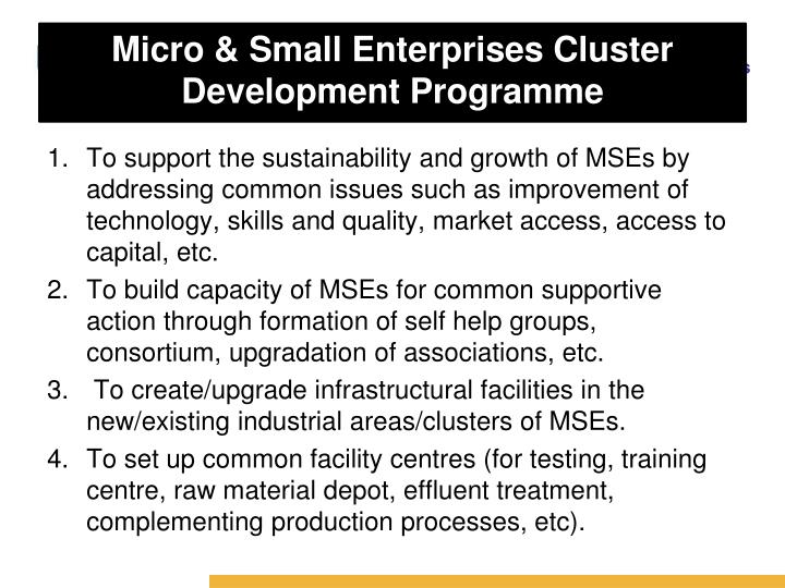 Micro & Small Enterprises Cluster Development