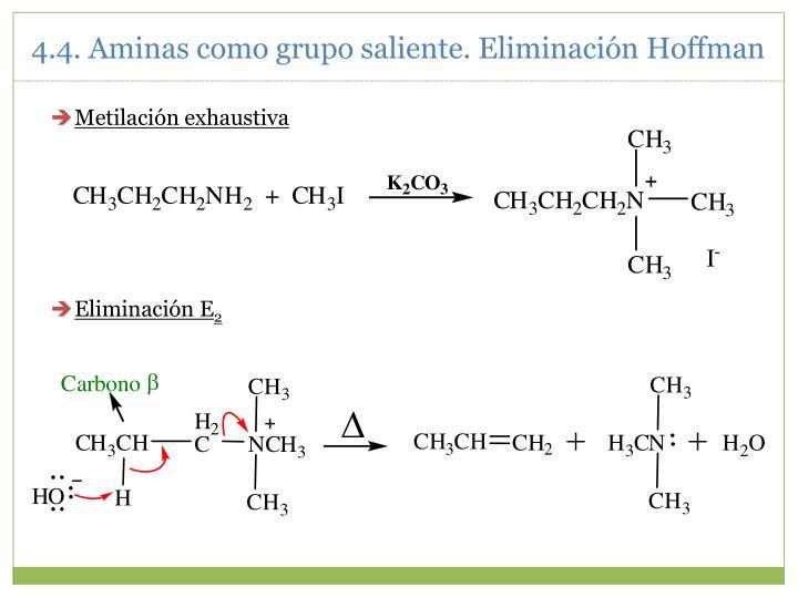 4.4. Aminas como grupo saliente. Eliminación Hoffman