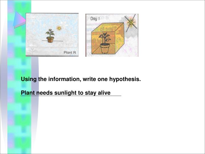 Using the information, write one hypothesis.
