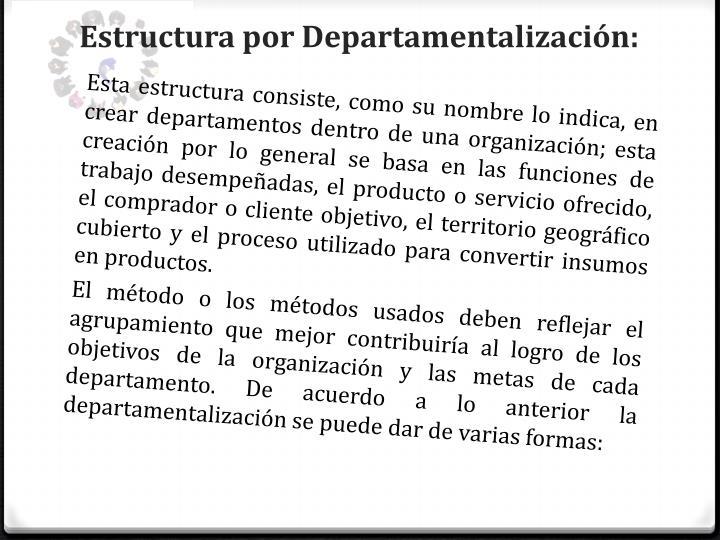 Estructura por Departamentalización: