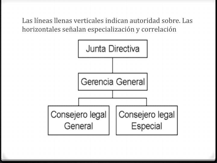 Las líneas llenas verticales indican autoridad sobre. Las horizontales señalan especialización y correlación