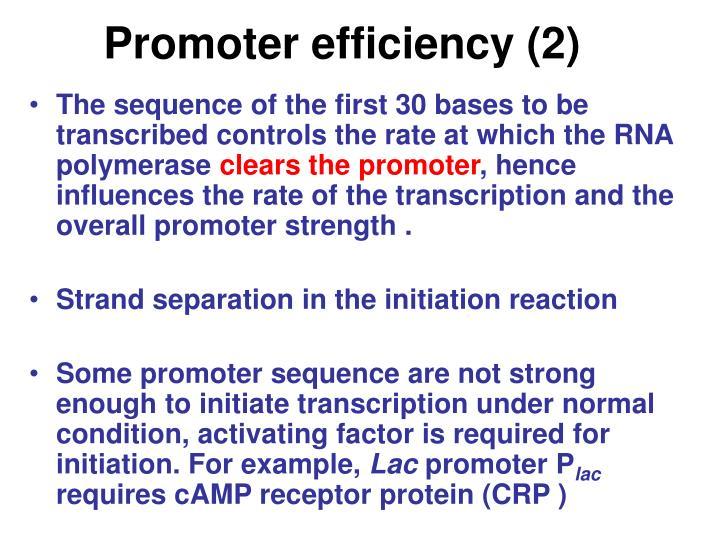 Promoter efficiency (2)