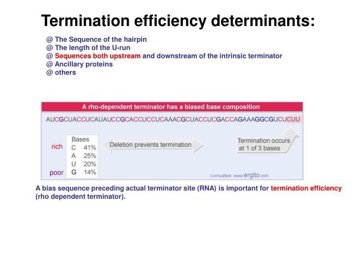 Termination efficiency determinants:
