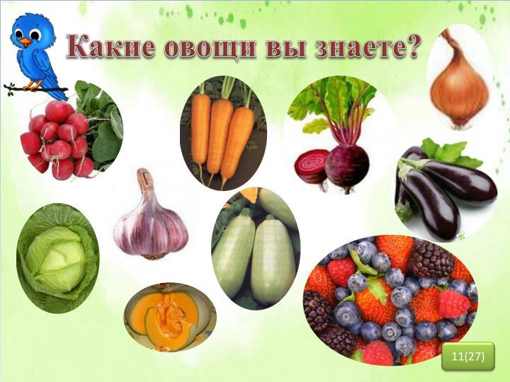 Какие овощи вы знаете?