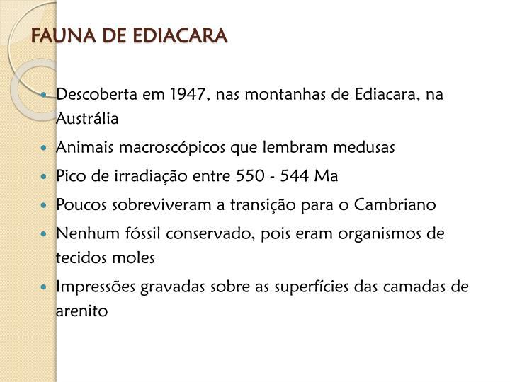 FAUNA DE EDIACARA