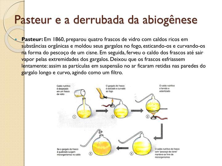 Pasteur e a derrubada da abiogênese
