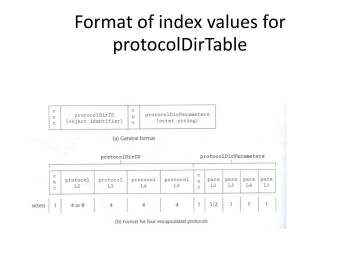 Format of index values for protocolDirTable